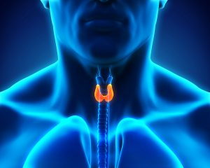 Elderly Care in Colts Neck NJ: Stages of Thyroid Cancer