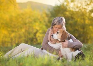 Home Care in Keyport NJ: Warm Weather Safety Tips for Your Mom's Pet