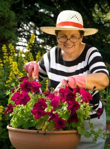 Caregiver in Holmdel Township NJ: Benefits of Container Gardening