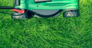 Lawn care near Columbus