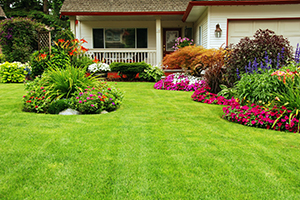 Cary Nc landscaping,landscaper cary nc,Commercial landscaper cary nc