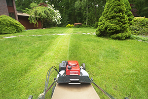 Lawn maintenance Service in cary,apex,raleigh,sanford,Cameron,Pittsboro and aberdeen NC