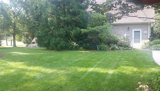 Lawn Maintenance sanford nc