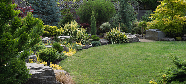 Residential Lawn Care Services