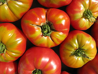 320px-End_of_Summer_Tomatoes