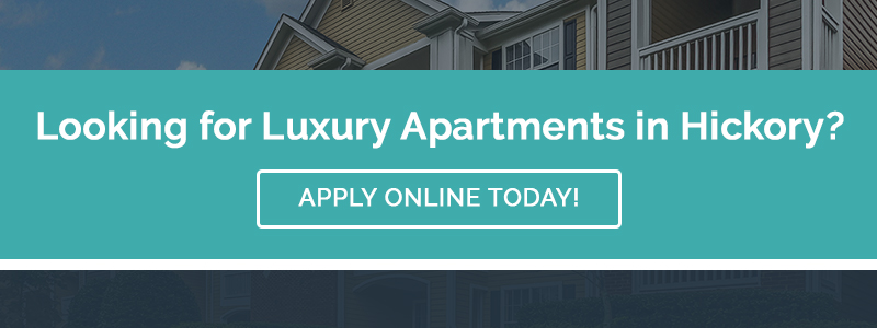 CTA - Looking for Luxury Apartments in Hickory