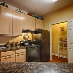 Apartment with open kitchen and modern styling and pantry - The Legends Apartments