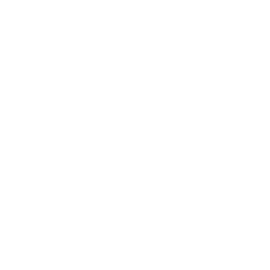 A four clover vector icon.