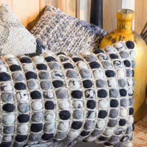 ellen degeneres pillows fort collins