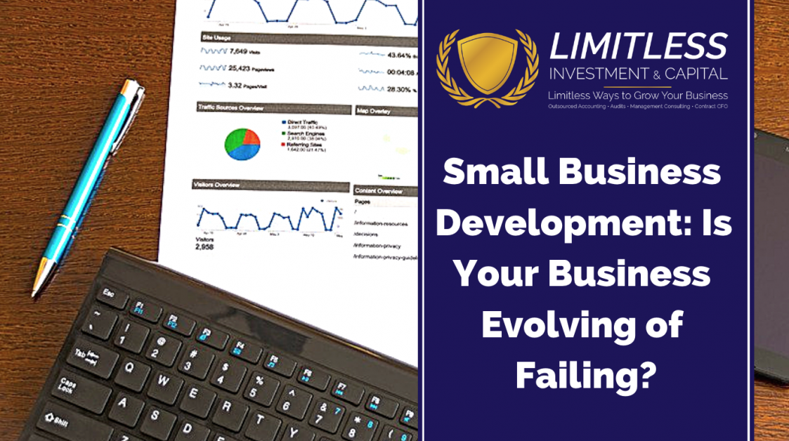 Small Business Development: Is Your Business Evolving of Failing?