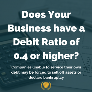 Does Your Business have a Debit Ratio of .04 or higher?