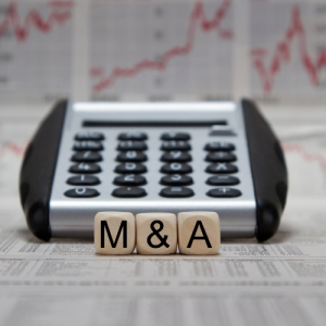 M&A Support and Advisory