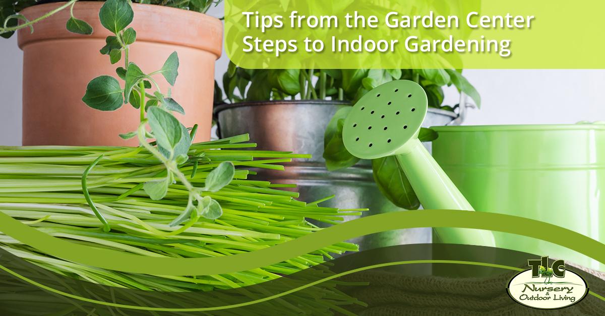 Tips From The Garden Centeru2014Steps To Indoor Gardening
