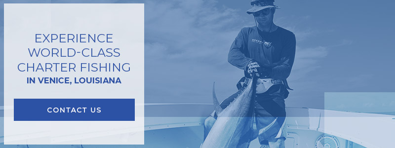 Corporate Fishing Charters - All-Inclusive Guided Fishing ...