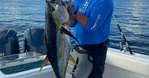 fishing excursion louisiana bluewater charter company venice