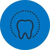 Whole Tooth Icon