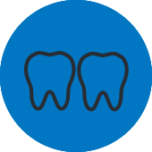 Two Teeth Icon