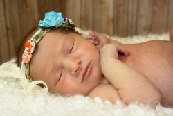 Newborn Photographer Fort Collins