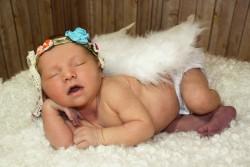 Newborn Photographer Loveland