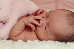 newborn photography Windsor