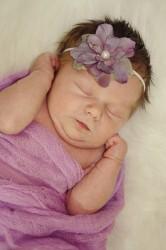 Newborn Photographer Northern Colorado