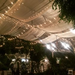 Decorative Event Fabric and Lighting from Lumen