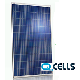 q cell 300 panel