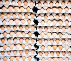 Egg storage on pallet flow