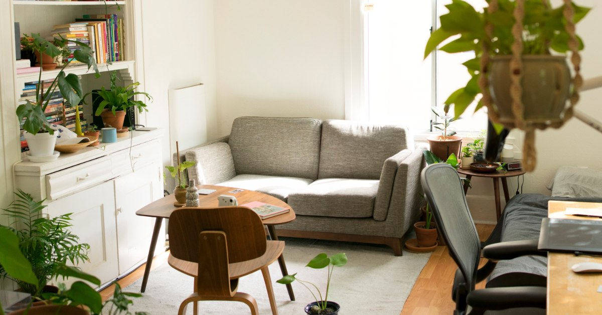 Comfortable living space with sofa, tables, books, and plants.