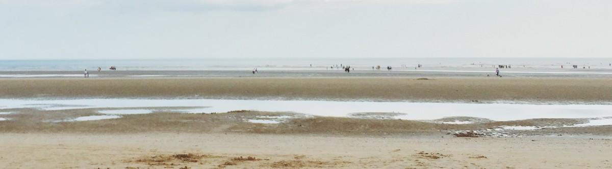 shoreline in the daytime