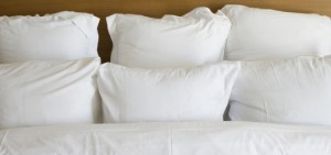 down mix pillows Newington