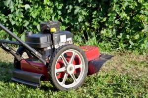 Lawn Care Grand Junction