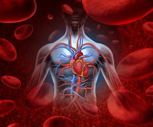 Identifying Your Disability Under The Listing Of Impairments: Cardiovascular System