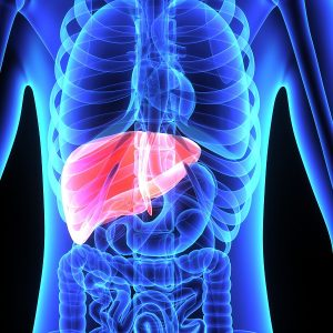 I Have Chronic Liver Disease - Am I Entitled To Disability Benefits?