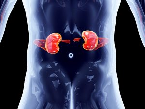 I Have Another Conditions Related To a Kidney Disease Or Transplant - Am I Entitled To Disability Benefits?