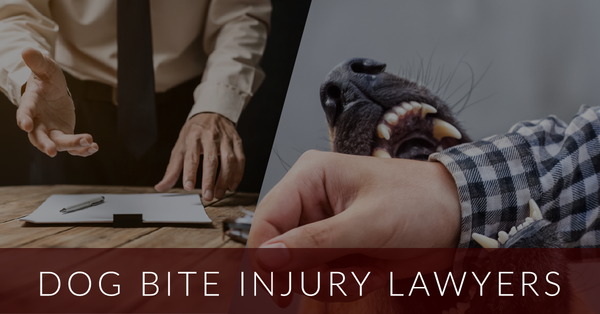 dog bite injury lawyer