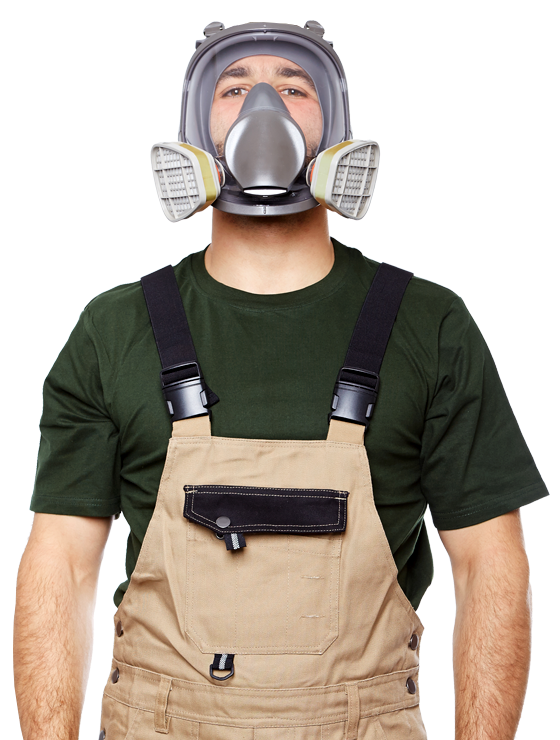 Call Colorado's #1 Mold Removers!