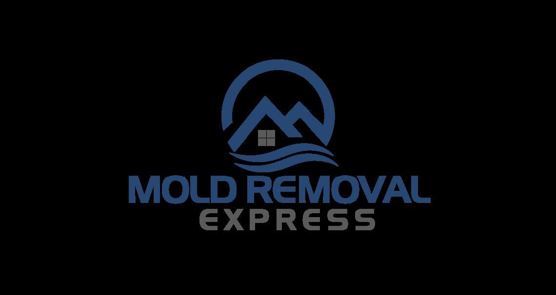 Denver Mold Testing