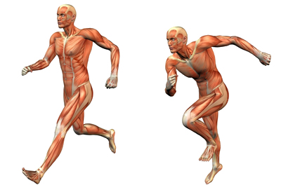 muscle-runner-1