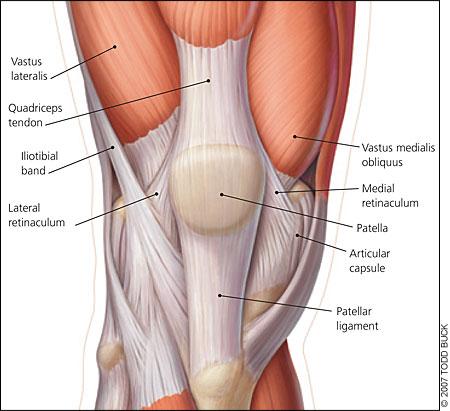 patella-femoral