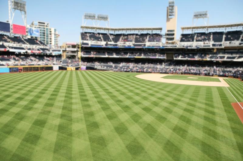 baseball-field-grass