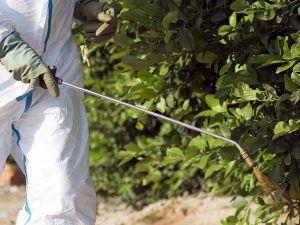 Image of someone spraying pesticides at a farm.