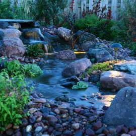 Mountain West Backyard Landscaping
