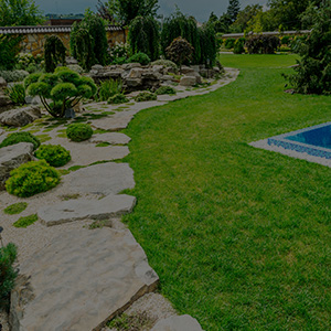 outdoor landscaping with grass and rock walkway