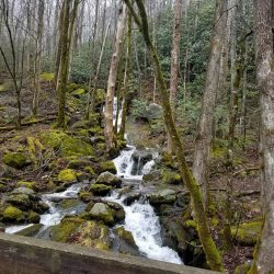 Bridge and Waterfall Near Gatlinburg
