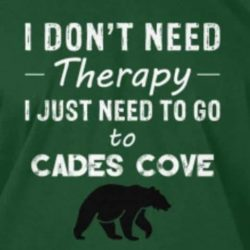 I Need to Go to Cades Cove Banner