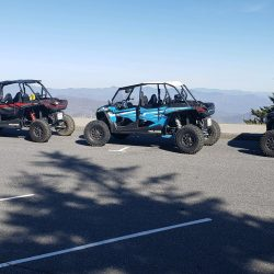 Red and Blue UTVs