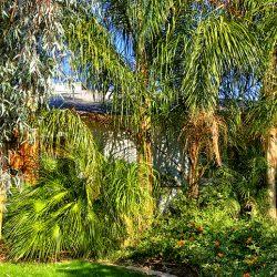 irrigation systems Phoenix