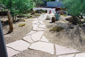 xeriscaping experts serving Phoenix and Flagstaff