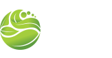 MSM Landscaping
